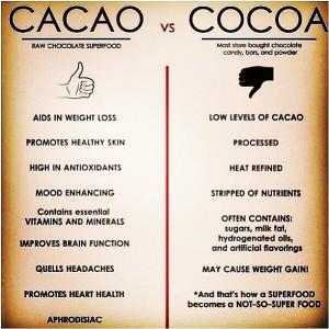 cacao-300x300